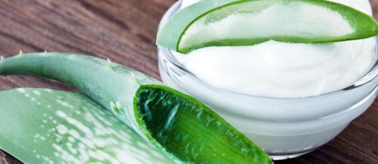 Produits à base d'Aloe vera